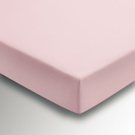 50/50 Plain Dye Percale Single Fitted Sheet, Blush
