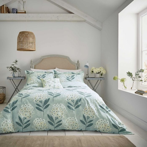 Hydrangea Bedding Aqua